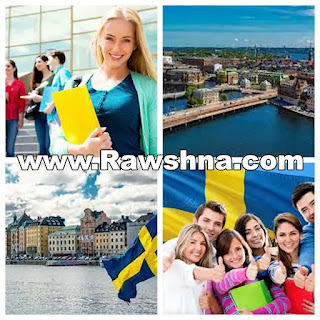 الدليل الشامل عن الدراسة في السويد