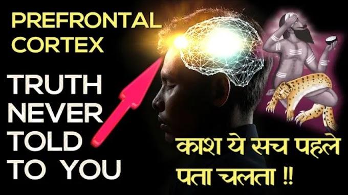 Prefrontal Cortex क्या है ? पूरी जानकारी हिन्दी में