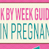 Week by Week Guide to Twin Pregnancy #infographic