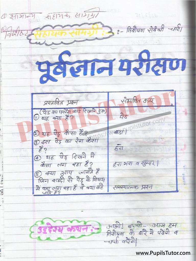 बीएड ,डी एल एड 1st year 2nd year / Semester के विद्यार्थियों के लिए हिंदी की पाठ योजना कक्षा 4,5,6 , 7 , 8, 9, 10 , 11 , 12   के लिए विषेशण टॉपिक पर