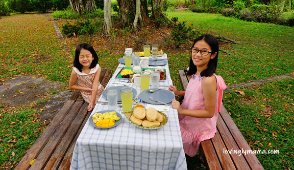 homeschooling in Bacolod - handling negative opinion about homeschooling - Bacolod mommy blogger - homeschooling tips- homeschooling in the Philippines - Filipino homeschoolers - family travel - breakfast in the garden - family picnic - outdoors - Delfin Ledesma Ancestral Home garden - Silay airbnb