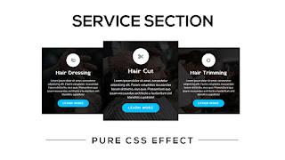 service section design