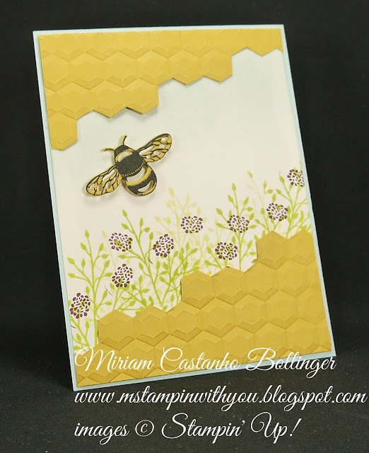 Miriam Castanho-Bollinger, #mstampinwithyou, stmapin up, demonstrator, dsc, all occasions card, jar of love stamp set, oh so eclectic stamp set, detailed dragonfly thinlits, dragonfly dreams stamp set, big shot, hexagon DTIEF,su