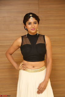 Roshni Prakash in a Sleeveless Crop Top and Long Cream Ethnic Skirt 105.JPG