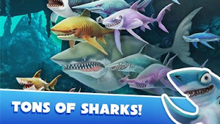 Hungry Shark World Walkthrough and Missions Guide