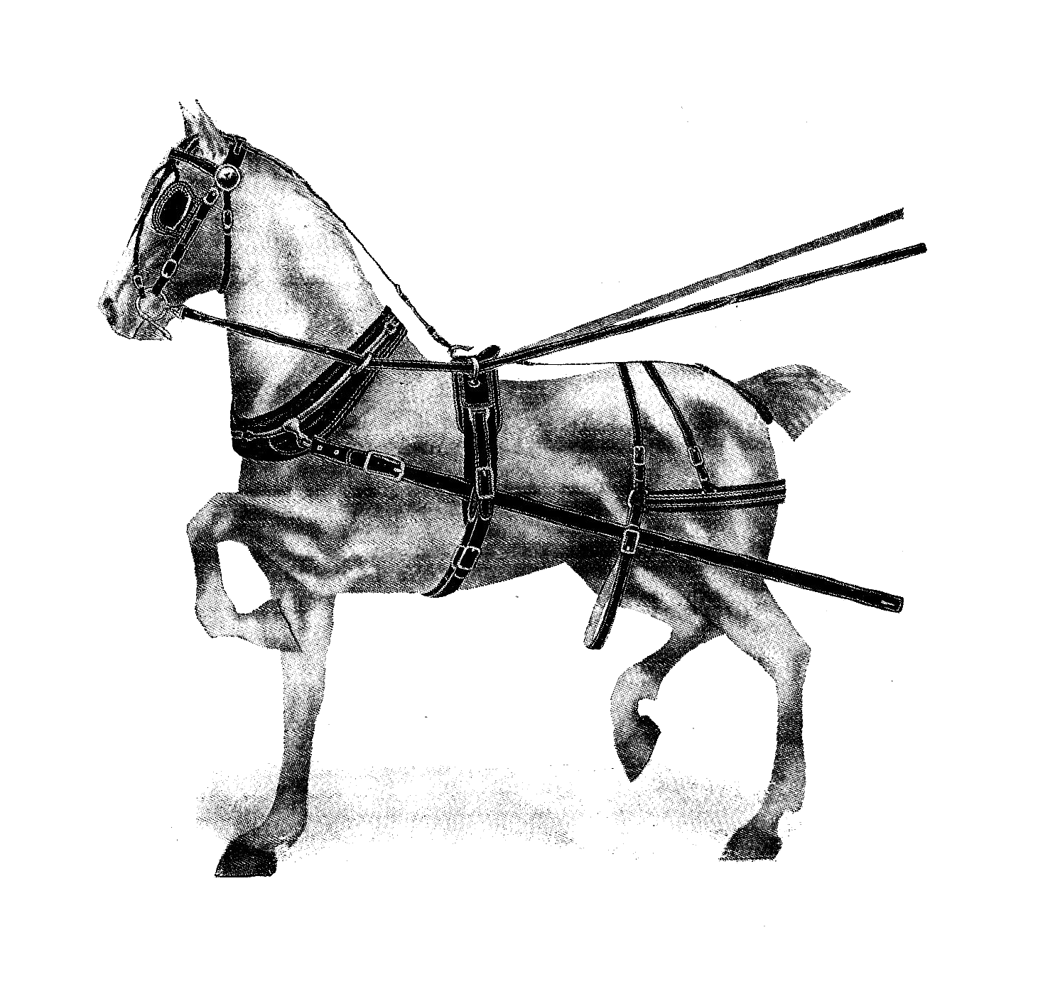 Digital Stamp Design Free Horse Digital Stamp 2 Antique