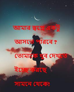 Bangla Good Night Sms - Best Bangla Good Night Shayari Girlfriend || Boyfriend
