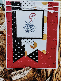 Lady bug card made with Stampin' Up! Love you Lots and Pop of Pink DSP