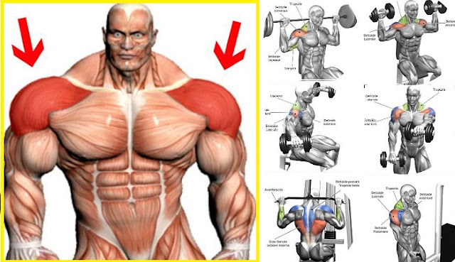 Building Muscle - How to Build Up Your Shoulders - all
