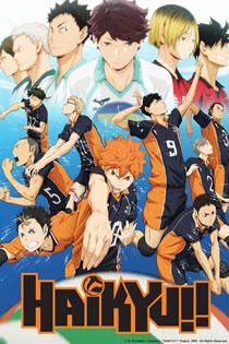 Anime Haikyuu Legendado