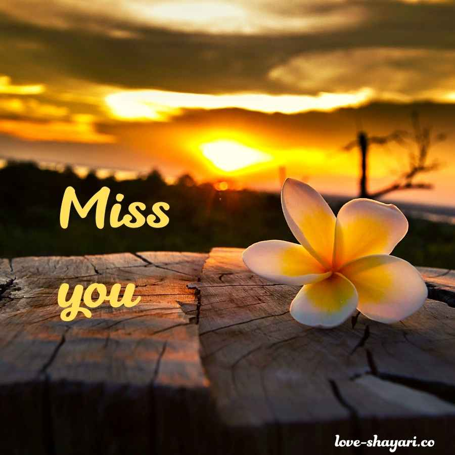 miss you so much images
