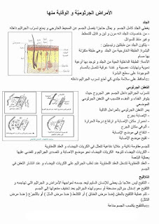 7 - ملخص دروس الايقاظ العلمي سنة سادسة صور
