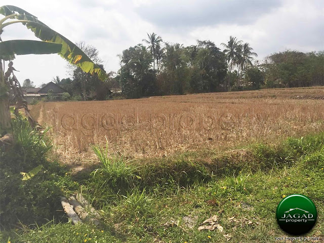 Tanah utara Pasar Rejodani jalan Palagan
