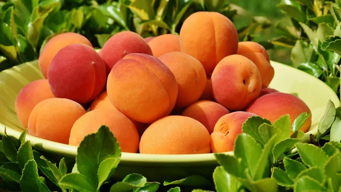 Peaches HD Image | Free Download
