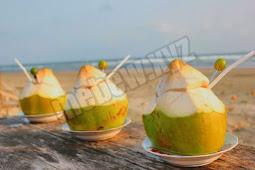 Ternyata ini manfaat minum air kelapa muda untuk kesehatan