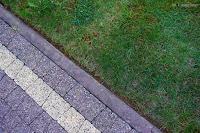 ładny trawnik
