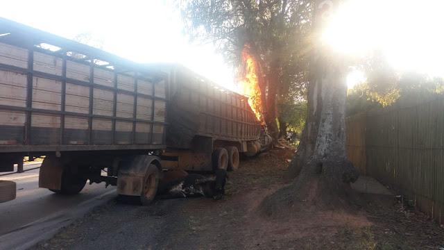 Acidente fatal entre carretas e ônibus na BR-267 em Cambuquira MG - Foto: Alô Alô Cidade