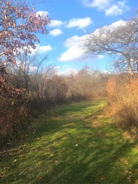The autumn sun warmed the trails through the woodlands and prairie.