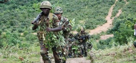 nigerian military sambisa forest boko haram