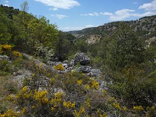 Valle del río Badiel. Camino hacia Almadrones