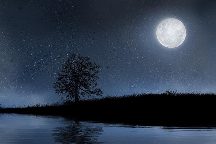 Hari Sendu dan Malam Seribu Bulan yang Terlewatkan