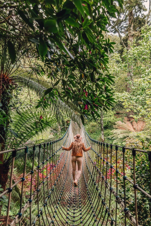 Heligan Burmese Jungle Rope Bridge