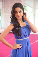 Divya Nandini stunning Beauty in blue Dress at Trendz Exhibition Launch ~  Celebrities Galleries 072.JPG
