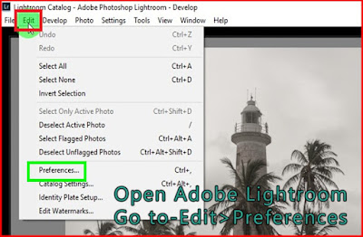 Go to edit-preferences Lightroom