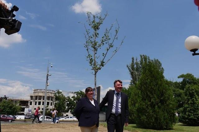 """Nürnberg: """"Baum für die Menschenrechte"""" in Partnerstadt Skopje"""