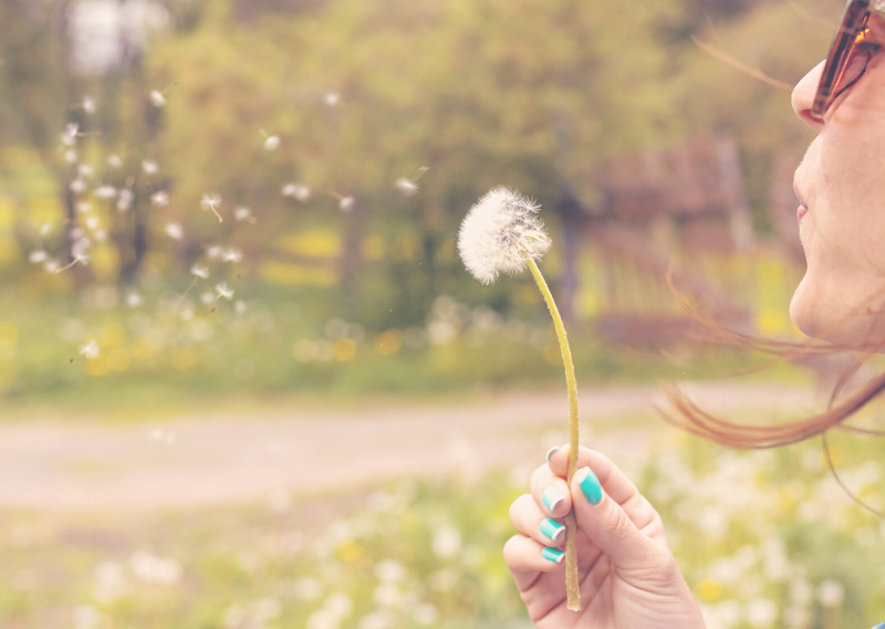A lady blowing a dandelion seed head in a post about a low spend year has helped me during the lockdown