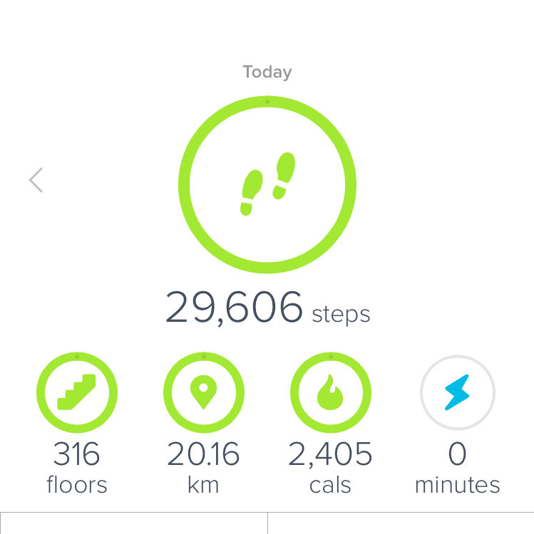 Review Fitbit Charge 2 And My 2017 Goal Walk More