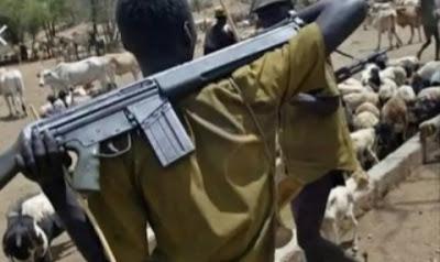 Kogi: Fulani Herdsman Raises Alarm As Suspected Hoodlums Cart Away 28 Cows