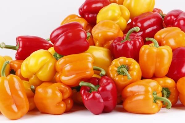 Jenis Sayuran paprika Sangat Cepat Untuk Menurunkan Berat Badan
