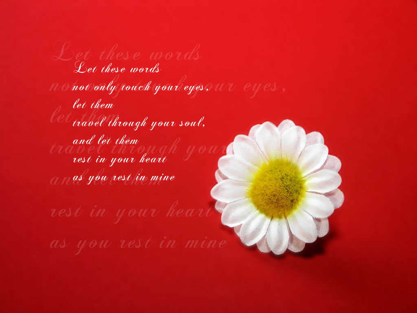 wallpaper: love quotes desktop wallpapers