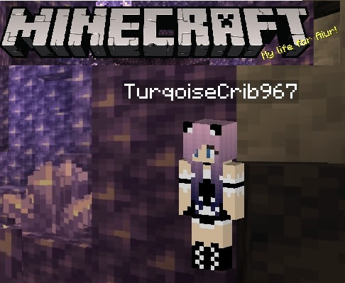 Friend me on Minecraft