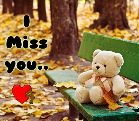 I Miss You Teddy Bear Picture