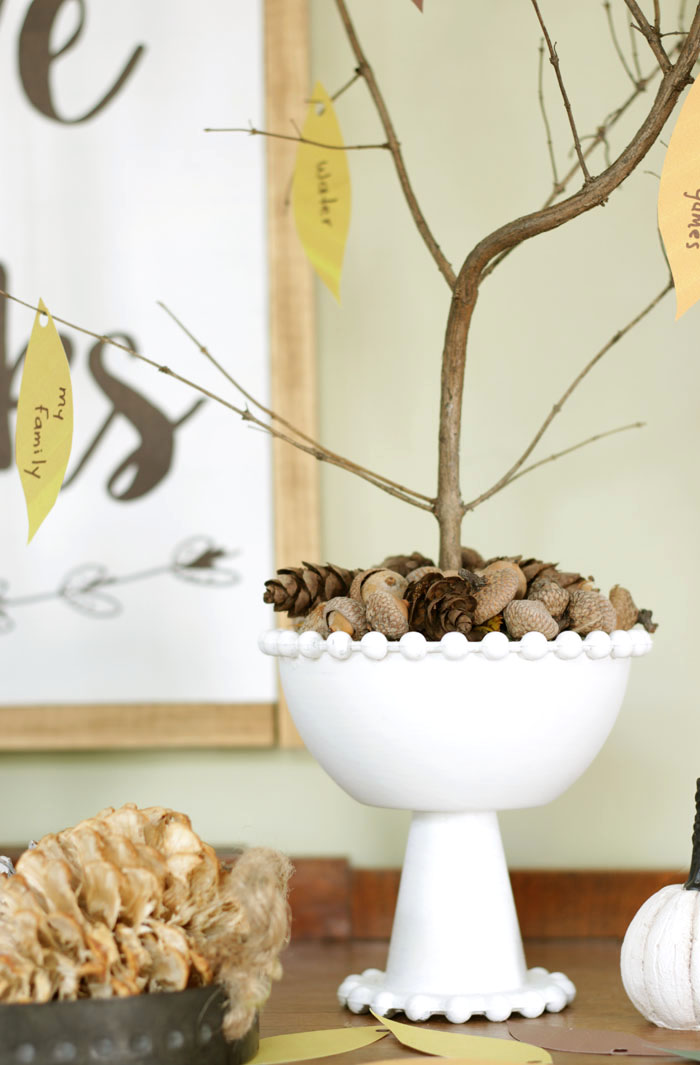 Thanksgiving vignettes with thankful tree in white bowl top off with acorns and pinecones