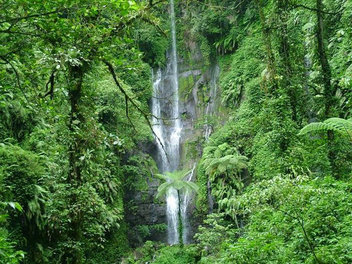 Air terjun Setaman, Kalibaru, Banyuwangi.