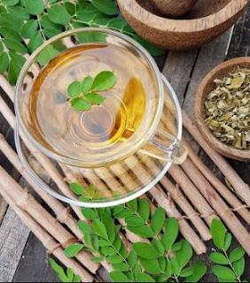 Manfaat minum teh daun kelor