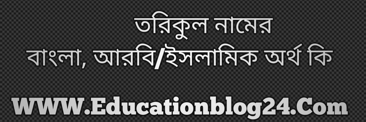 Torikul name meaning in Bengali, তরিকুল নামের অর্থ কি, তরিকুল নামের বাংলা অর্থ কি, তরিকুল নামের ইসলামিক অর্থ কি, তরিকুল কি ইসলামিক /আরবি নাম