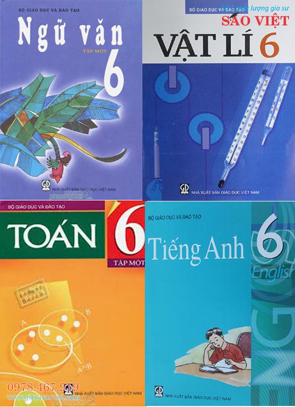 Gia sư lớp 6, trung tâm gia sư Sao Việt nhận dạy kèm tại nhà môn Toán, Lý, Ngữ Văn, tiếng Anh. Đội ngũ gia sư dạy giỏi, có kiến thức chuyên môn, dạy bài bản, giúp học sinh tiến bộ vượt trội.