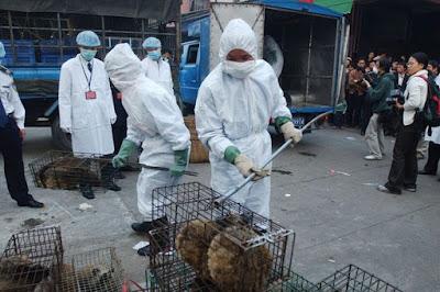 Virus Diduga Dari Pasar Wuhan