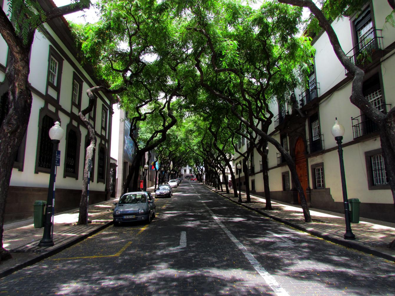 Zarco avenue