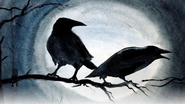 Waspada! Arti Mimpi Melihat Burung Gagak Bisa Jadi Pertanda Masalah Besar Akan Datang, Gagak Merupakan Simbol Dari Kejahatan dan Kegelapan, Sehingga Membuat Mimpi ini Pertanda Buruk, Benarkah? Yuk Simak Selengkapnya