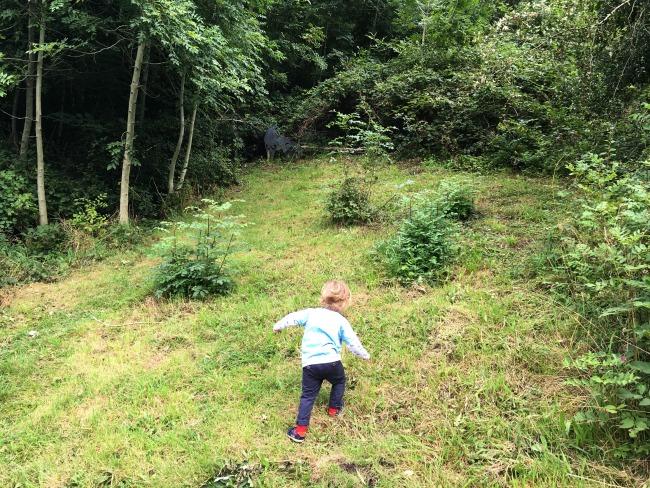 toddler-climbing-hill-cwm-carn-forest
