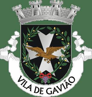 Gavião