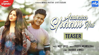 Aawara Shaam Hai Lyrics - Meet Bros - Piyush Mehroliyaa