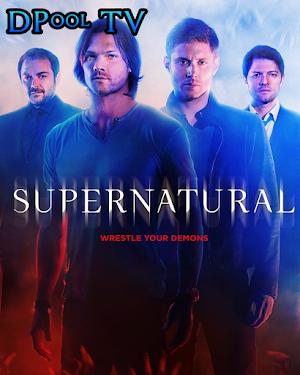 Supernatural Serie Completa Latino Carpeta Contenedora MEGA