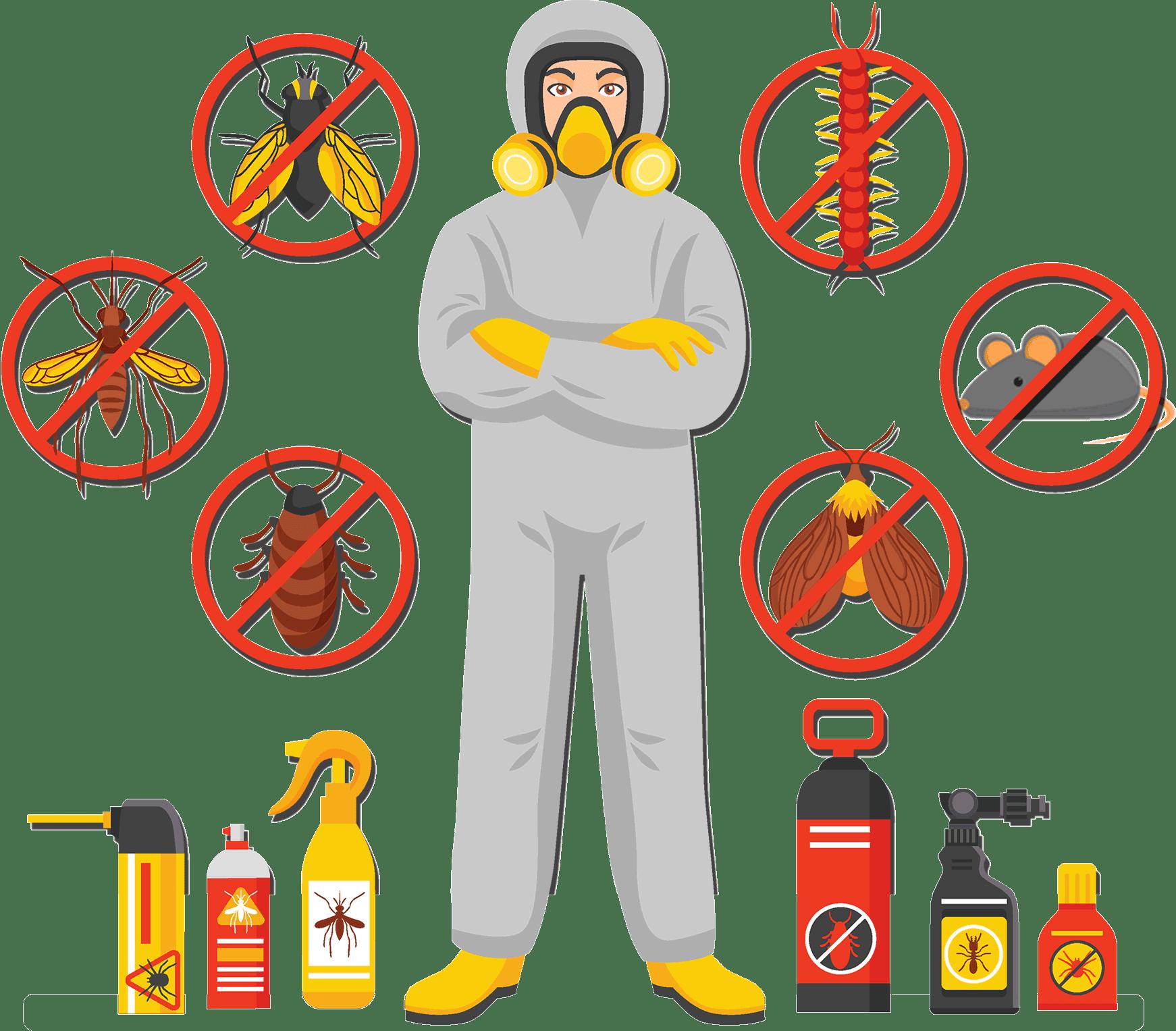 Jasa Anti Rayap, jasa anti rayap fumida, Pembasmi Rayap bersama profesional FUMIDA