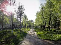 Дай ума мне, Господи Боже мой, в этот раз хоть сразу расти под ГОСТ… - наталия пономарева новодвинск, p_i_r_a_n_y_a, красивые стихи о жизни
